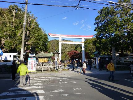 鎌倉宮の鳥居.jpg